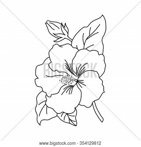 Graphical Flower Illustration. Green Flower, White Flower, Contour Flower, Bloom Flower, Decorative