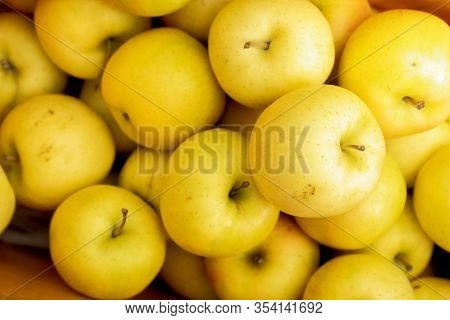 Yellow Apples Close Up Fresh Beautiful Fruit Background , Delicious Apples In Aomori Tohoku City Als
