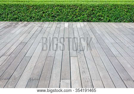 Old Hardwood Decking Or Flooring And Plant In Garden Decorative.