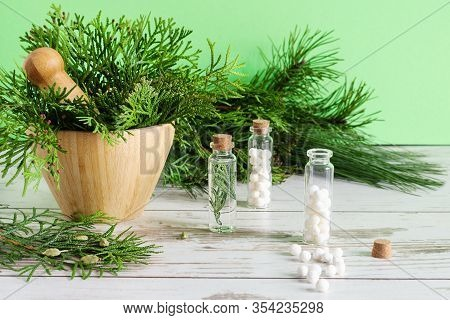 Thuja Herbal Pills And Fresh Branches Of Thuja In Bamboo Mortar Bowl. Bottles Of Homeopathic Globule