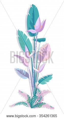 Blooming Banana Tree. Fern Leaves. Vector Illustration Tropical Plant. Large Banana Tree Leaves And