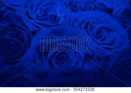 Bouquet Of Beautiful Blue Roses. Blue Creative Tinting. Trend Color Classic Blue. Color Of 2020. Mai
