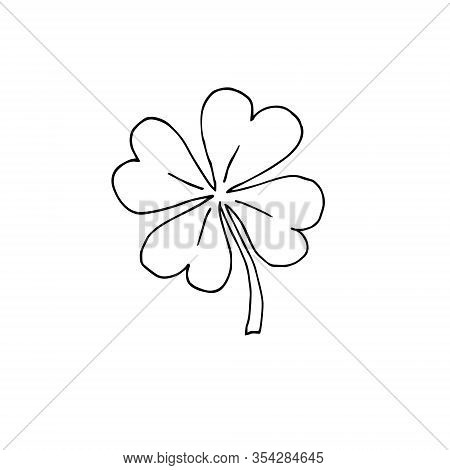 Vector Hand Drawn Doodle Sketch Shamrock Clover Isolated On White Background