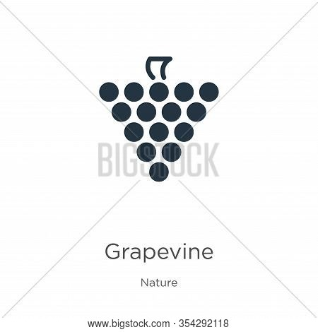 Grapevine Icon Vector. Trendy Flat Grapevine Icon From Nature Collection Isolated On White Backgroun