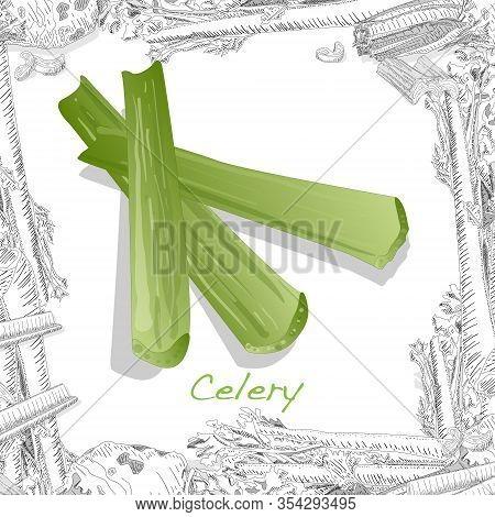 Celery Isolated On White Backgraund. Art Illustration