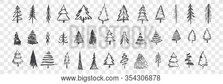 Hand Drawn Christmas Trees Set. Scribbles, Doodles. Collection Of Pencil Various Scattered Christmas