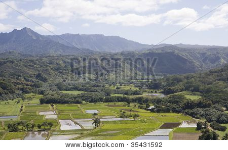 Hanalei Valley and Mountains, Kauai, Hawaii
