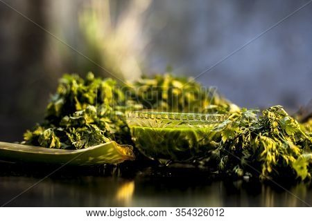 Face Mask Of Coriander In A Glass Bowl Consisting Of Some Cilantro Juice, And Lemon Juice Well Mixed