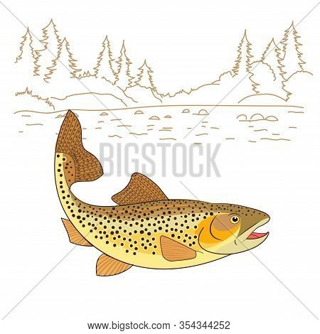Fishing Emote. Brown Trout Fish Realistic Drawing Vector Illustration. American Trout Swimming In Wa