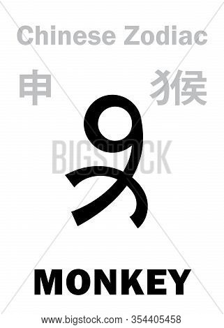Astrology Alphabet: Monkey -- Sign Of Chinese Zodiac. (also: Hanuman, The King Of Monkeys). Chinese