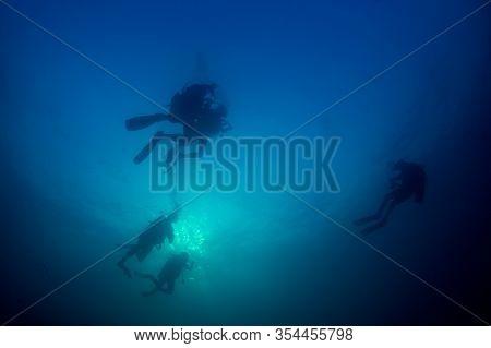 Scuba diving underwater. Scuba divers and fish silhouette against ocean surface