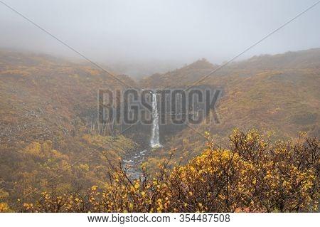 Svartifoss Waterfall Black Basalt Columns Between Autumn Colored Landscape In Fog