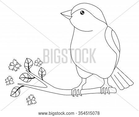 Little Beautiful Bird - Vector Linear Picture For Coloring. Sparrow Is Sitting On A Flowering Branch