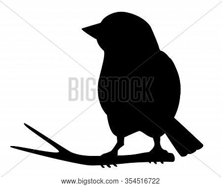 Little Beautiful Bird - Vector Silhouette For Logo Or Pictogram. Sparrow Sitting On A Branch - Icon.