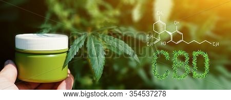 Cbd Cannabis Chemical Structural Formula, Cannabis Industry, Growing Hemp, Pharmacy Business, Cbd El
