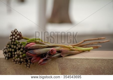 Minimalistic Bouquet Of Black Tulips And Brunia On A Balustrade Or Stone Railing In A Public Park, G