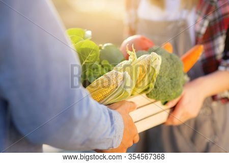 Beautiful Young Asian Woman And Man Holding Fresh Organic Vegetable With Basket Together In The Hydr