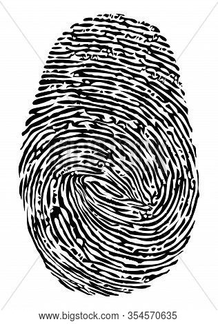Vector Fingerprint Icon. Black Finger Print Symbol Isolated On White Background. Thumbprint Security