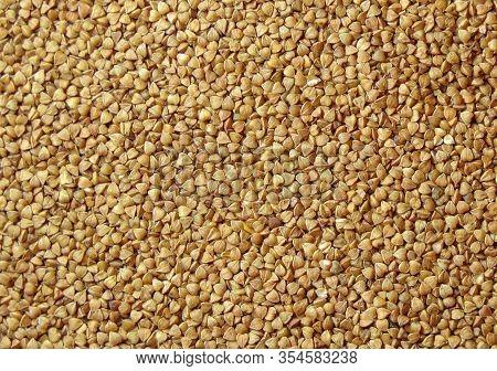 Buckwheat. Background Of Buckwheat. Buckwheat Porridge. Healthy And Organic Natural Food. Macro Phot