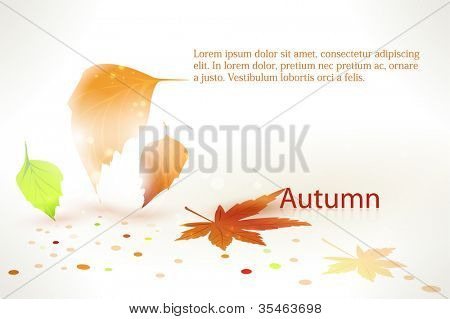 Abstract background with playfully falling and fallen leaves and color dots. Shadows and perspective giving it a 3d feeling. Space for your text.