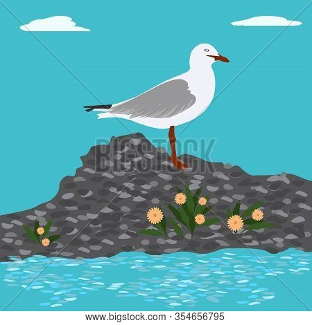 Seascape, Island, Cobblestones - A Seagull Sits On A Stone, Yellow Daisies - Vector. The World Of Bi