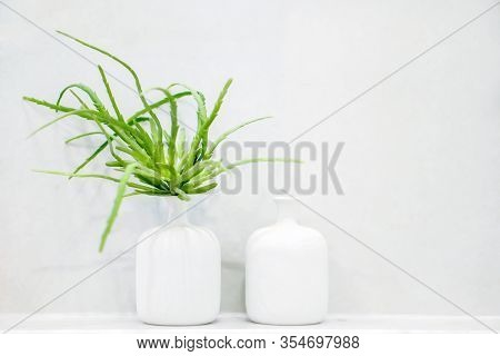 Green Plant In White Vases Put On White Mortar Shelf Front Of White Mortar Wall In The Toilet.