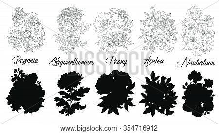Set Of Black And White Outline Flowers - Begonia, Chrysanthemum, Azalea, Peony, Nasturtium. Vector B
