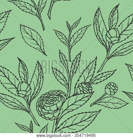 Seamless Pattern With Camellia Sprigs On A Green Background In A Vector