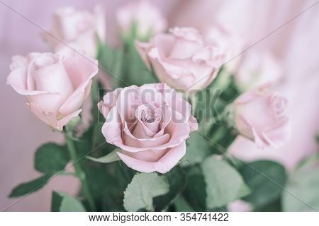 Bouquet Of Delicate Romantic Pink Roses. Romantic Valentines, Blooming Roses, Tender Flowers. Spring