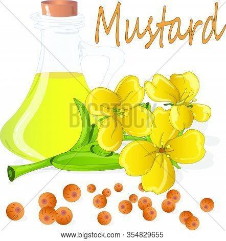 Mustardcolor001