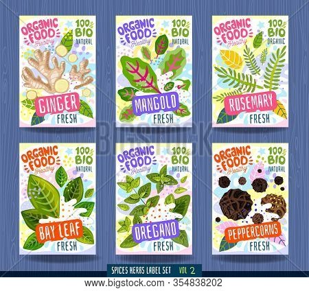 Abstract Splash Food Label Template. Vegetables, Herbs, Package Design. Ginger, Mangold, Rosemary, B