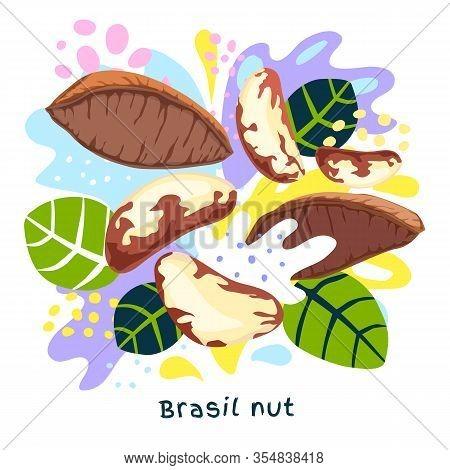 Fresh Brasil Nut Juice Splash Organic Food Condiment Splatter. Herbs Nuts. Abstract Colorful Art Spl