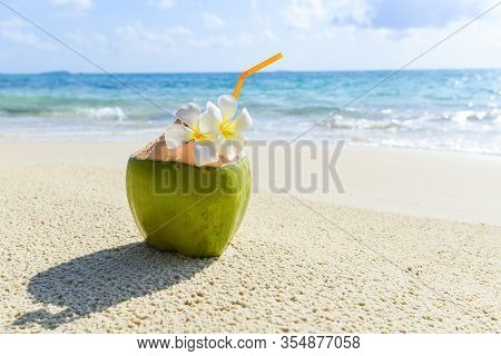 Coconut Tropical Fruit On Sand Beach Background Water / Fresh Coconut Juice Summer With Flower On Be