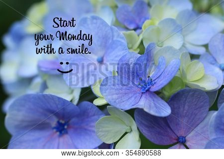 Monday Inspirational Quote - Start Your Monday With A Smile. On Background Of Beautiful Flower And P
