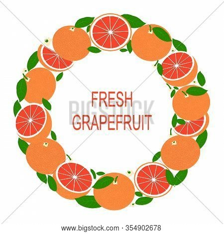 Wreath With Grapefruit. Vector Illustration With Fresh Grapefruits In Circle. Vector Flat Design Sui
