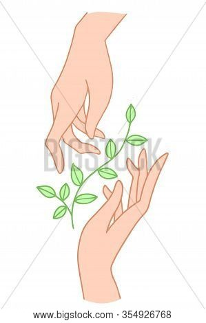 Two Hands Hold Floral Plant With Leaves. Vector Illustration In Simple Style Isolated On A White Bac
