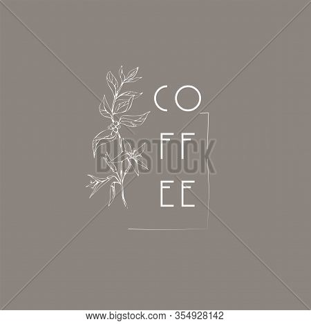 Coffee Plant Logo And Branch. Hand Drawn Wedding Herb, Plant And Monogram With Elegant Leaves For In