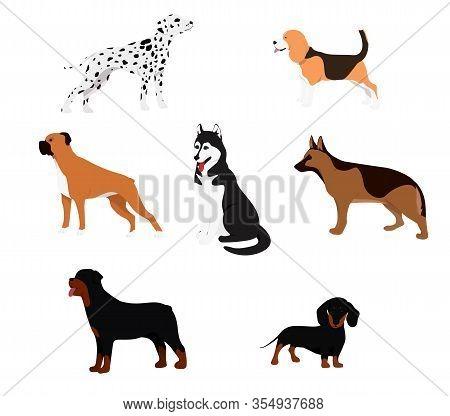 Cartoon Dog Set. Dogs Eat Pet Food Jumping Wiggle Sleeping Running And Barking Brown Happy Cute Anim
