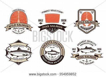 Salmon Logo And Design Elements