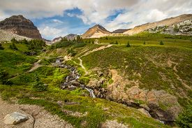 The Rocky Mountains. A Small Alpine Stream Along The Helen Lake Trail In Banff National Park, Albert