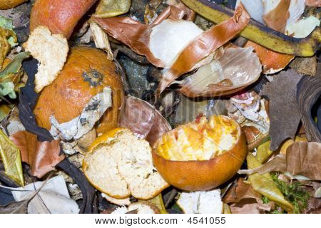 Vegetable Waste