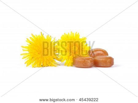 Colorful and crisp image of cough drops with dandelion flowers poster