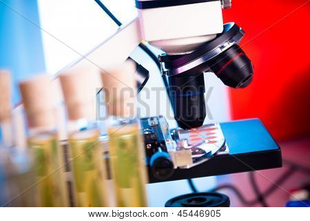 Microtubes with biological samples in criminalistic laboratory for DNA analysis