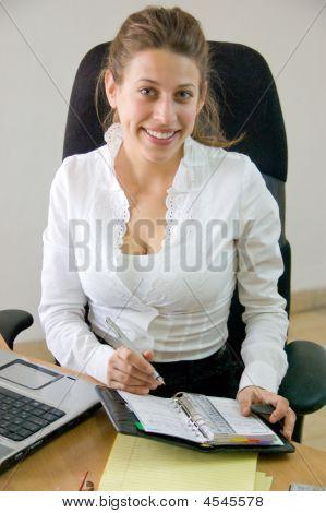 Business Woman  Browsing Through Her Agenda