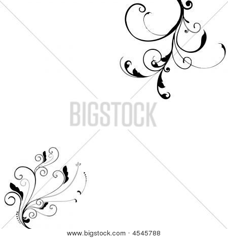 Black White Floral Background