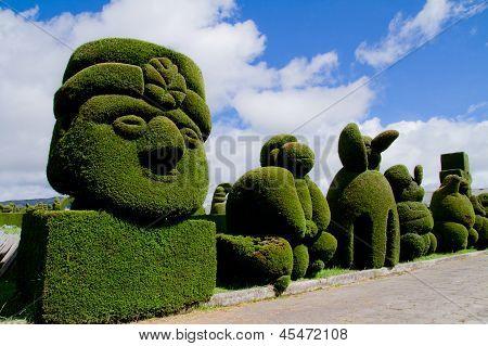 sculpted trees topiary, Tulcan Ecuador