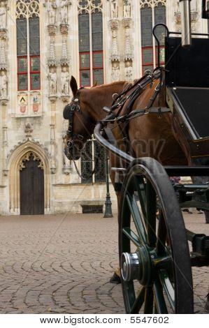 Horse Carriage On Burg Bruges
