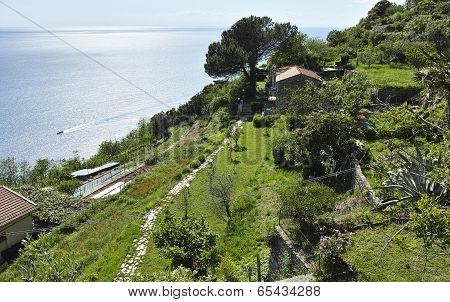 Panoramic View In Campiglia