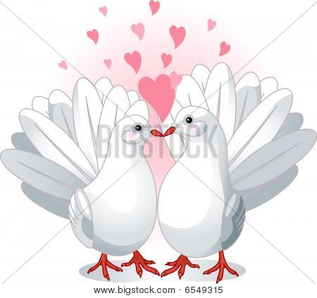 Illustration of two white doves pressing together and forming a heart shape poster