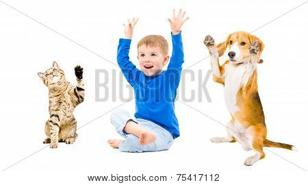 Happy boy, dog and cat together